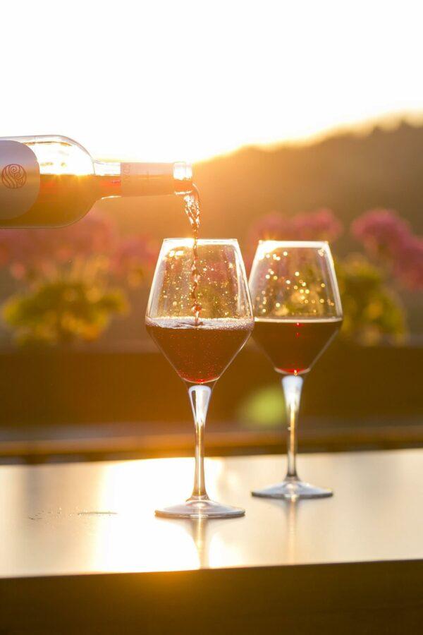 Víno Apartmány Ladná